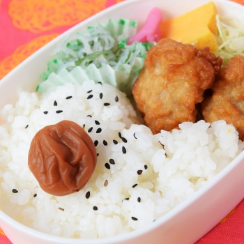 新学期準備 サイズぴったりのお弁当袋をつくろう!: ビタミンi家庭科部