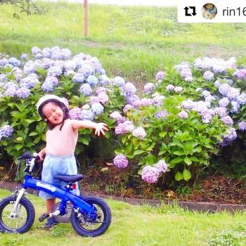 #へんしんバイク インスタグラムで素敵な投稿!